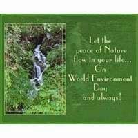 Best Slogans On Environment