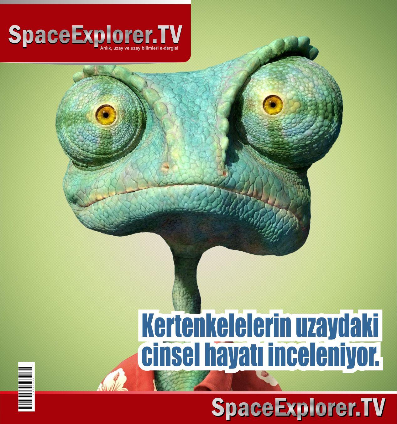 Oksijensiz ortam testleri, Yerçekimsiz ortam testleri, Uzay, Uzaya gönderilen hayvanlar, Rusya, Space Explorer,