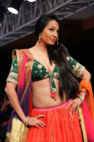 Kashmira shah blenders pride hot photos 2012-12