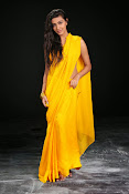 Neelam Upadhyay photos in Yellow saree from Action-thumbnail-6