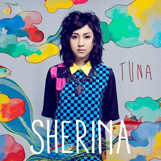 Download Lagu Sherina - Apakah Ku Jatuh Cinta (Feat. Vidi Aldiano)