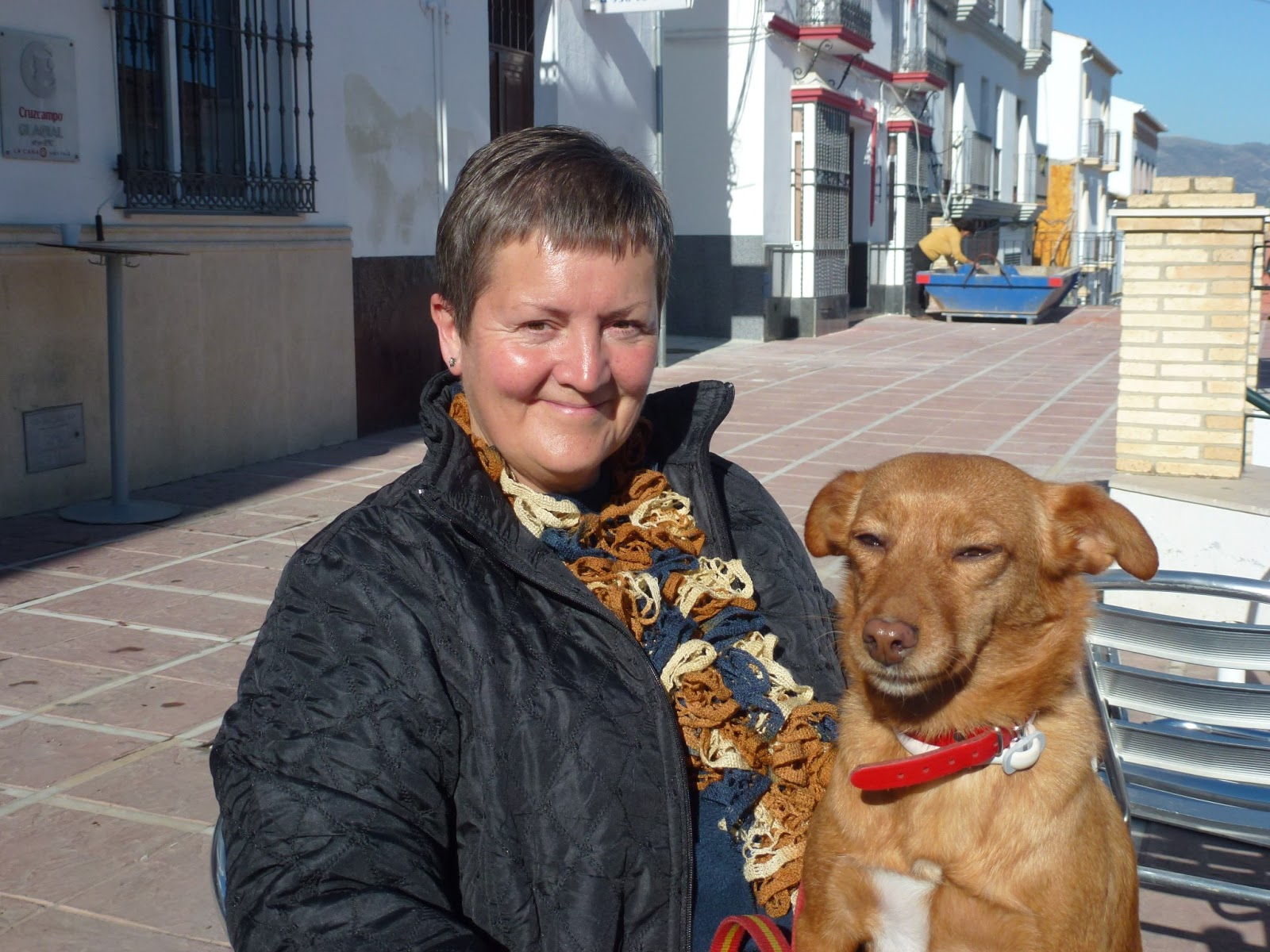 Gentle Giants Dog Rescue
