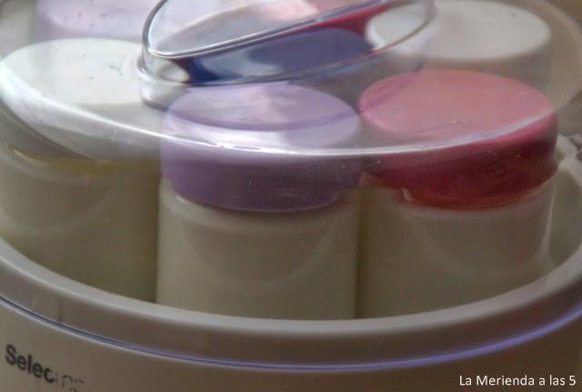 Yogurt casero by La Merienda a las 5