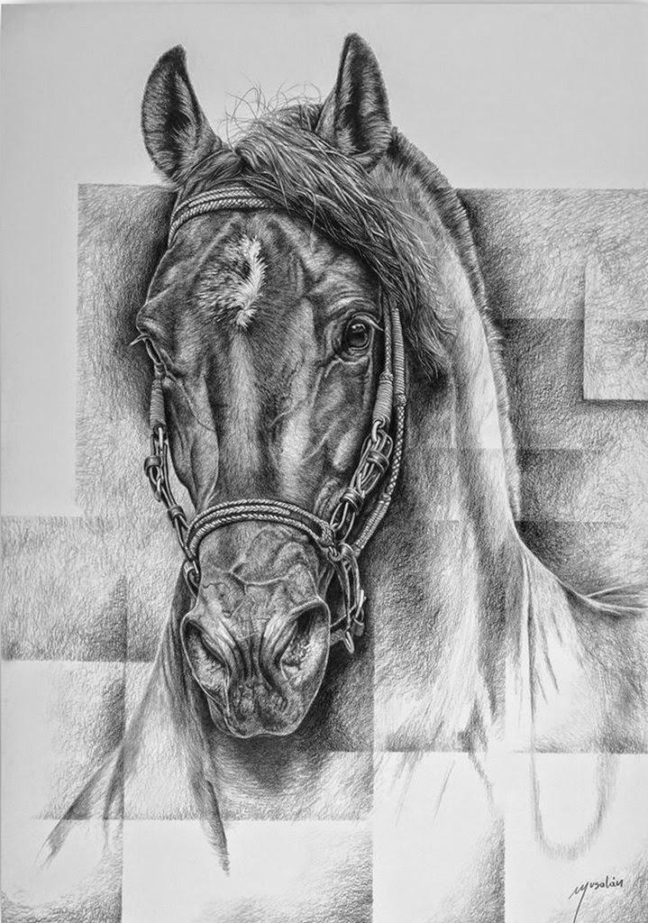 dibujos-dibujos-artisticos-de-caballos