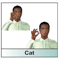 american sign language cat