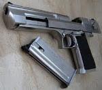 Porte  de  Arma para  Agentes já!