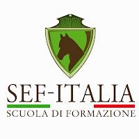 Scuola Equestre di Formazione SEF - Italia