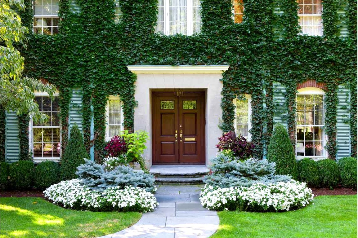 More than 50 beautiful house garden and landscaping ideas for Beautiful small home gardens