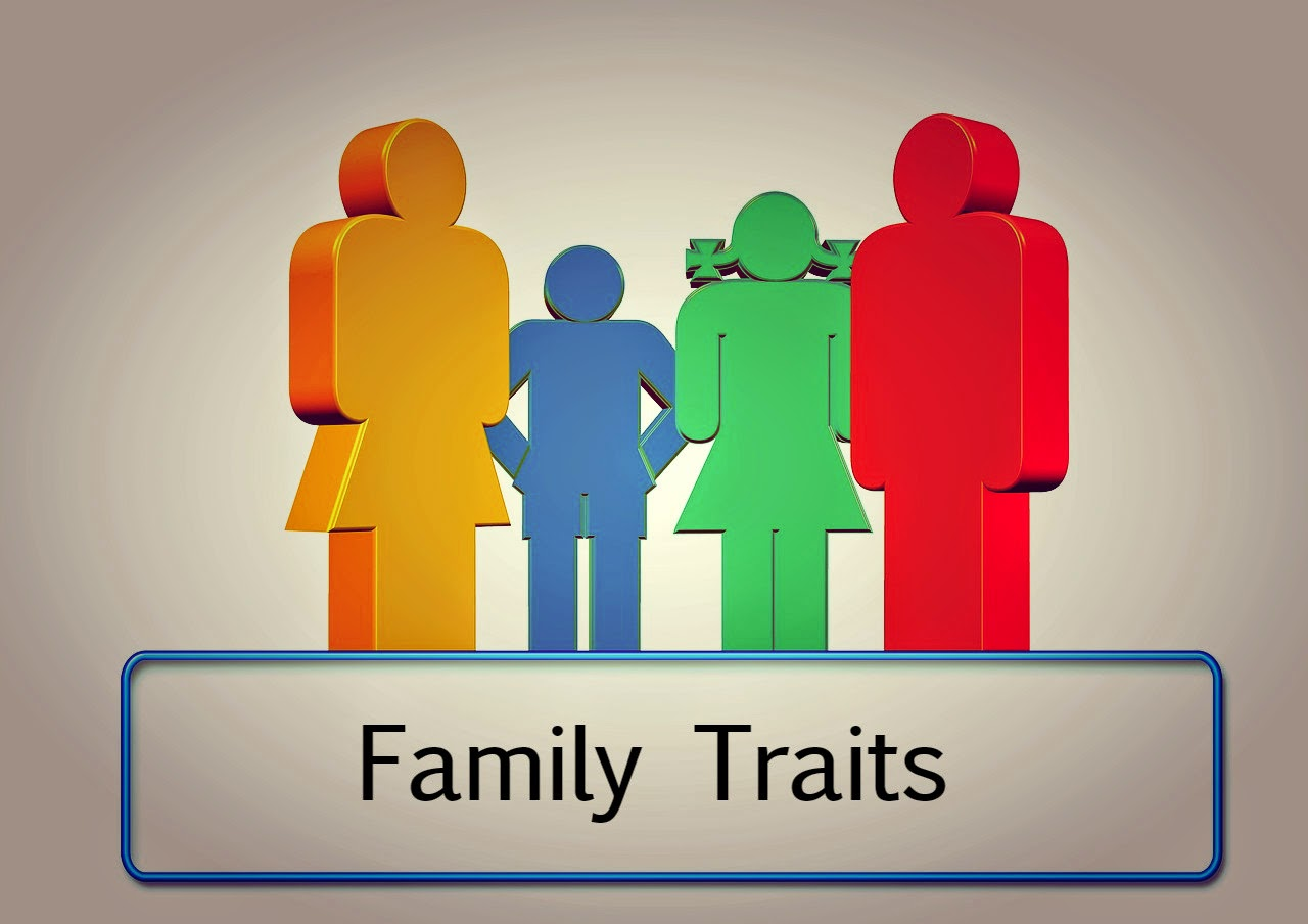 The Book Of Me:  Prompt 60 --Family Traits  How Did I Get Here? My Amazing Genealogy Journey
