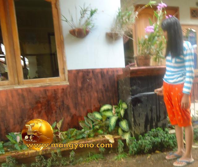 FOTO : Gadis tetangga sedang menyiram bunga di halaman rumah admin.