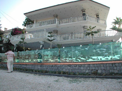 Eccentric Businessman Replaces Villa Fence with Mind-Blowing Aquarium