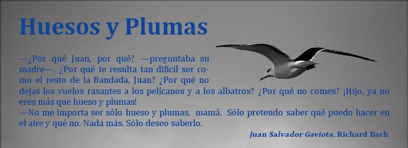 <center>Huesos y Plumas</center>