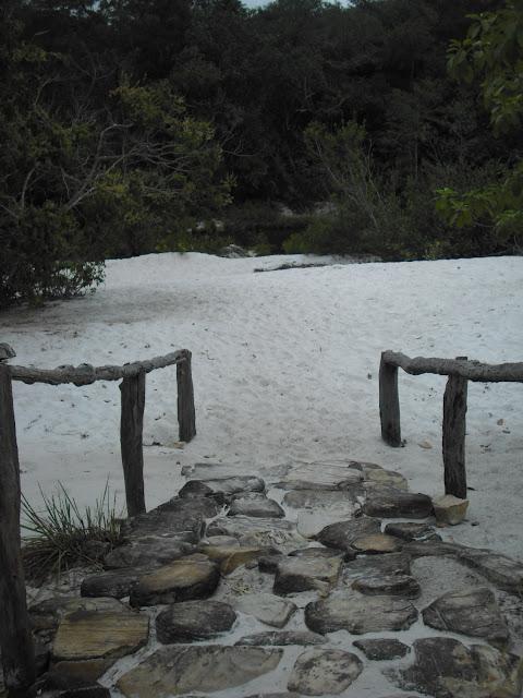 Foto tirada no Parque Estadual Rio Preto