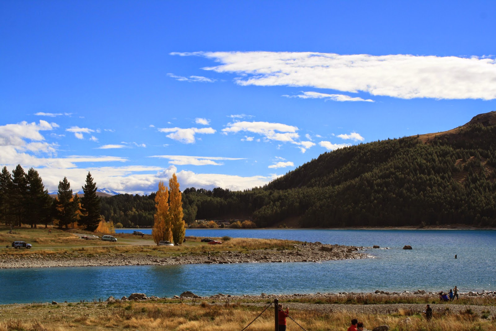 Orange trees, blue lake, blue sky.