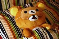 My babe bear ♥