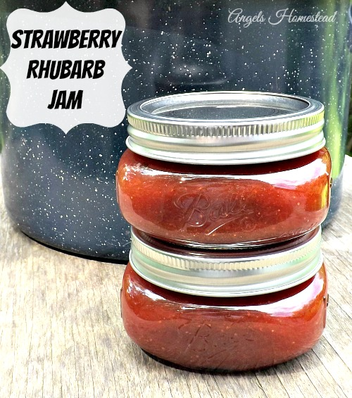 Home Sweet Homestead: Strawberry Rhubarb Jam {SRC}