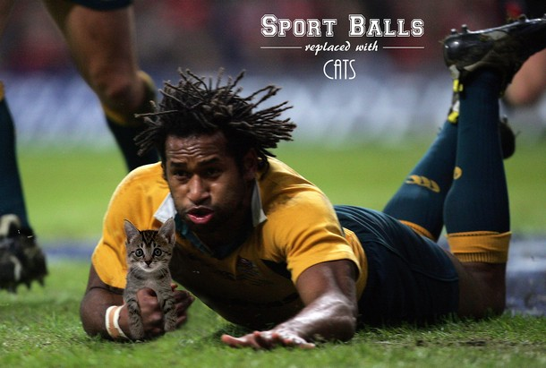 Hilarious Sport Moments