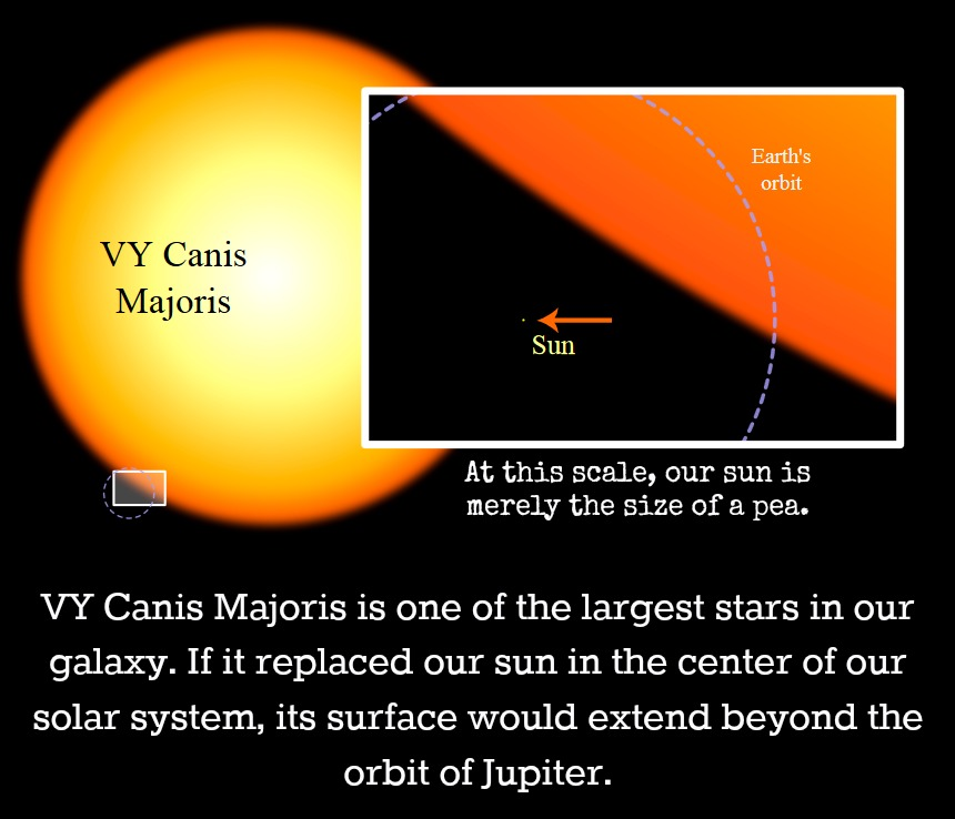 Vy Canis Majoris Compared To Our Sun - Stairs Design Blog