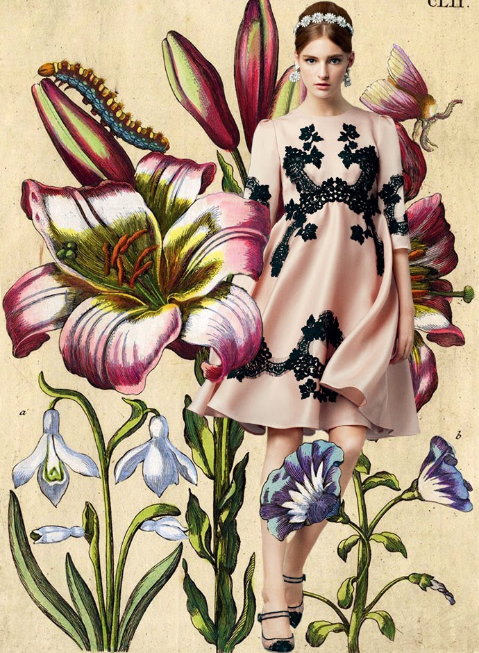 Tuba Edman: Dolce & Gabbana Spring Summer 2014 collection ...