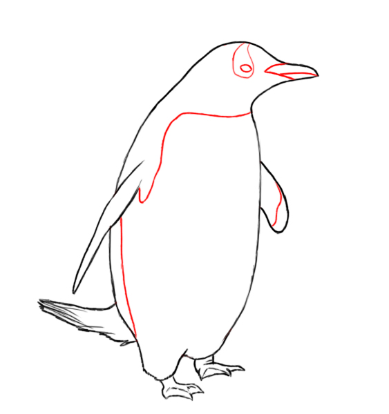 How To Draw A Penguin Video  Apps Directories