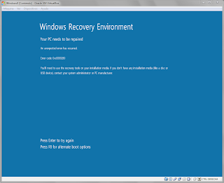 Windows 8 error 0xc0000260