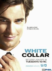 Xem Phim Cổ Cồn Trắng - White Collar