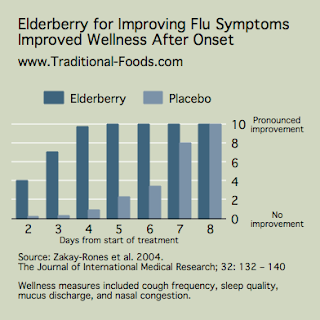 Elderberry prevents flu