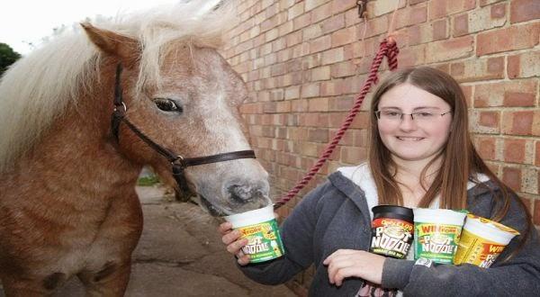Kuda Makan Mie Instan Doyan Juga Nih Kuda Sama Makanan Siap Saji