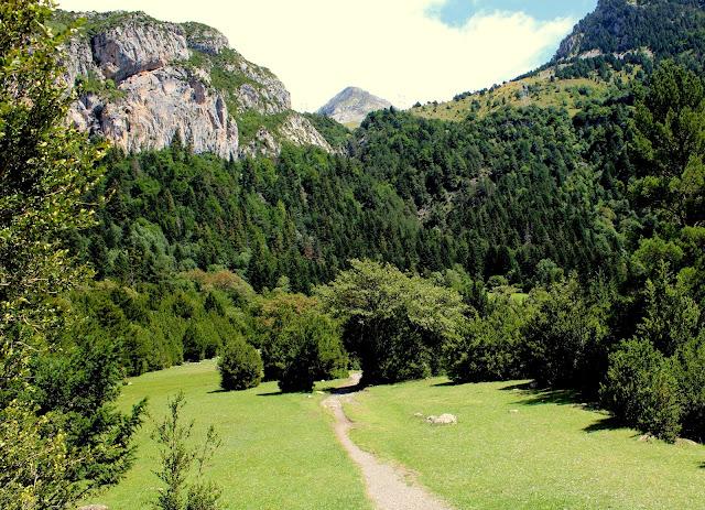 Boj en el valle de Bujaruelo