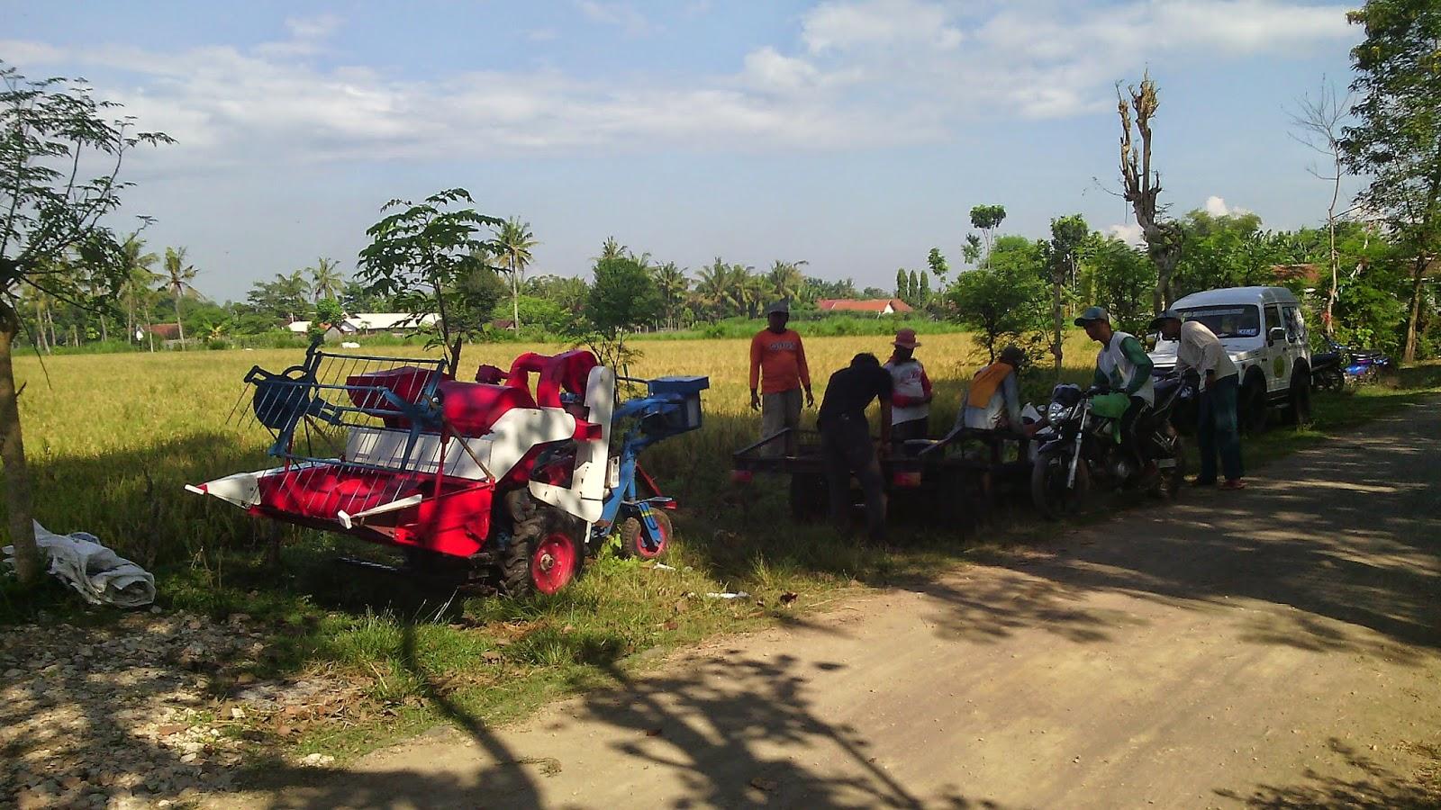 Demo Mesin Panen Padi Di Gumukmas Jember Santoso Advance Paket Tudung 1 Pisau Dan Gearcase Agricultural Machinery