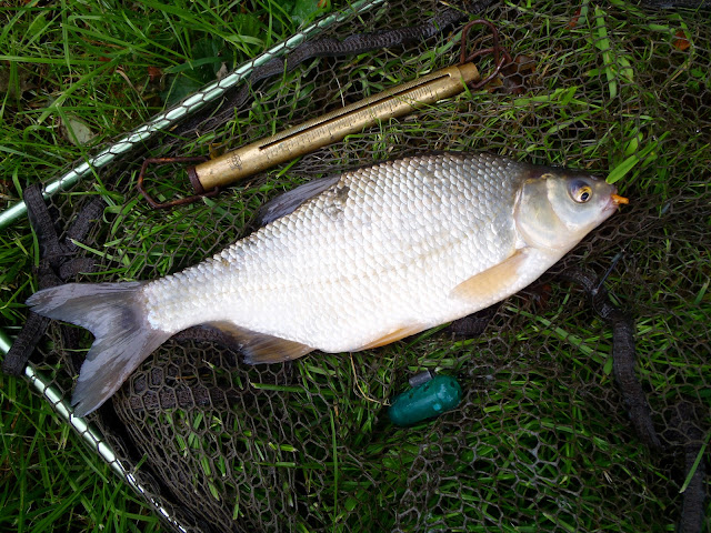 1lb 7oz Coventry canal hybrid