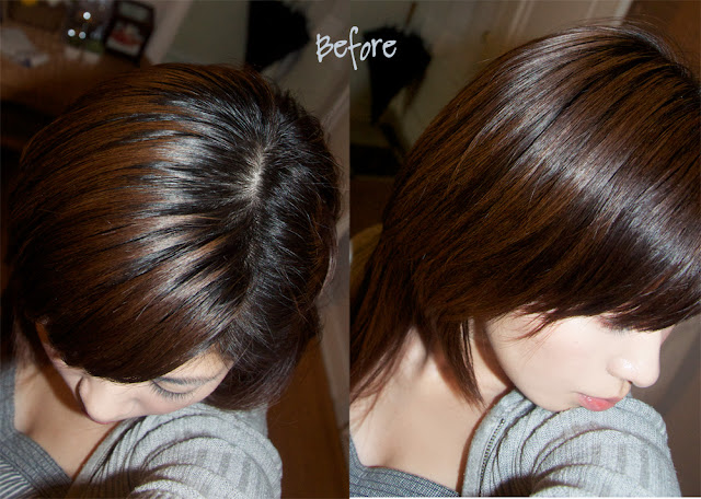 ekiblogcom hair bleaching and light ash brown hair color