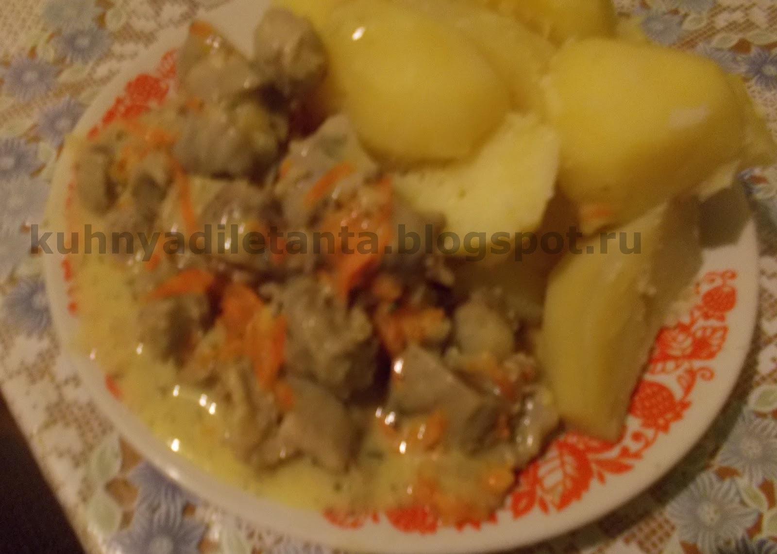 Куриные желудки в мультиварке со сметаной рецепты простые и вкусные