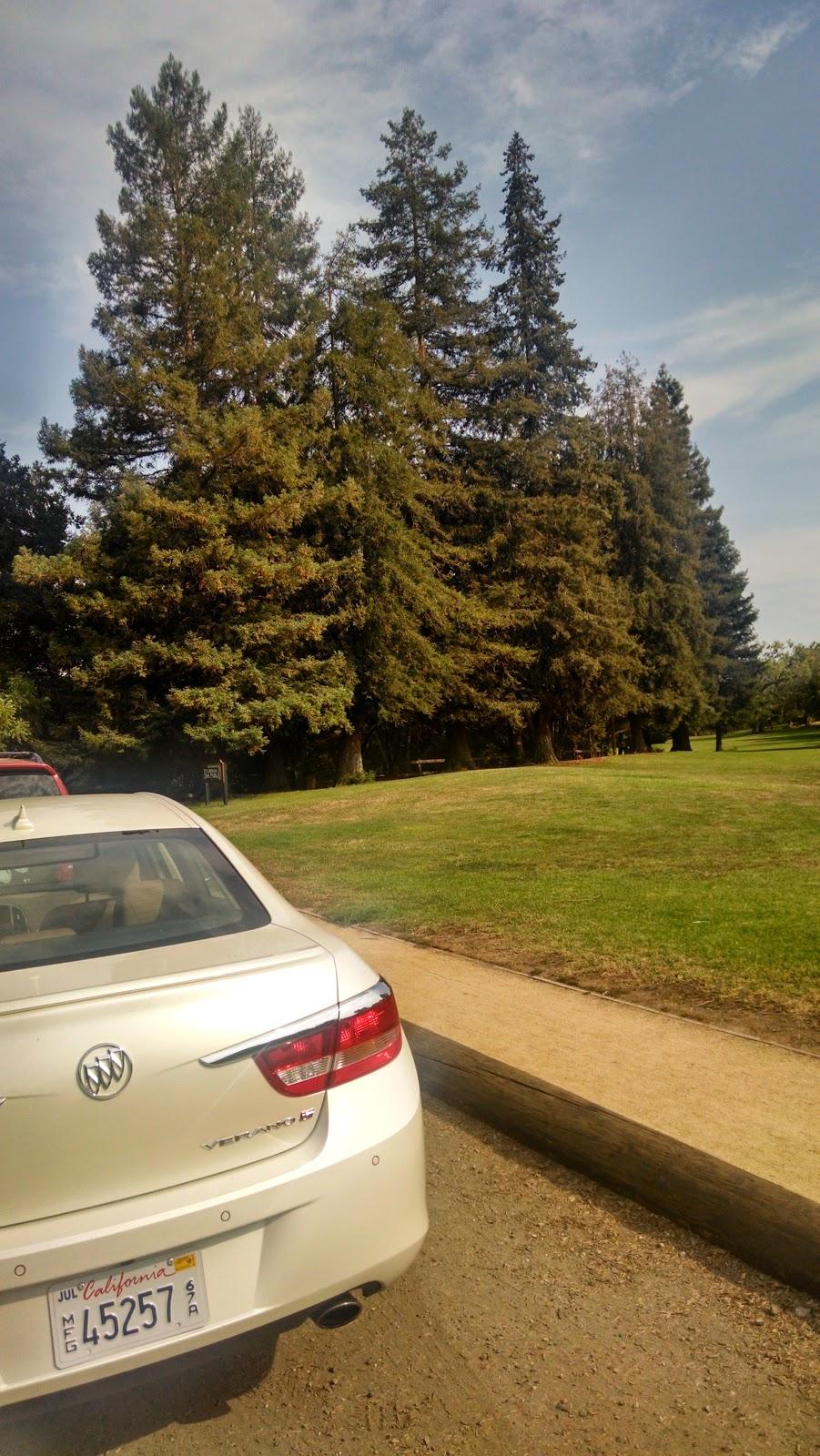 Cornelius Bol Park, Palo Alto