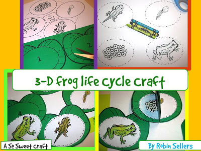3-D frog life cycle craft