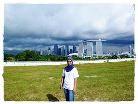 : singapore 2010 :