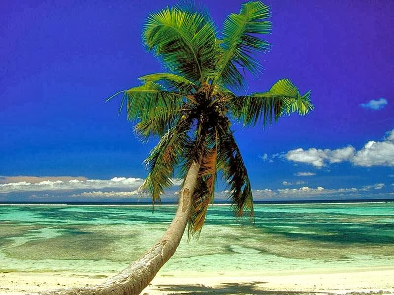 Tropical Beach Wallpaper Beautiful Nature Images And Wallpaper