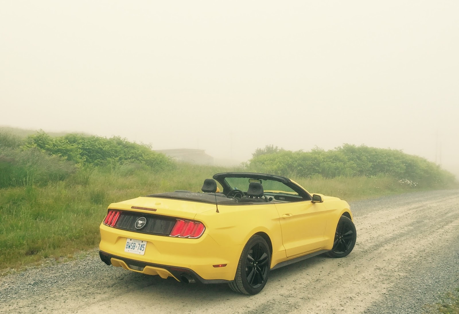 2015 Ford Mustang Ecoboost Convertible Review Great Car