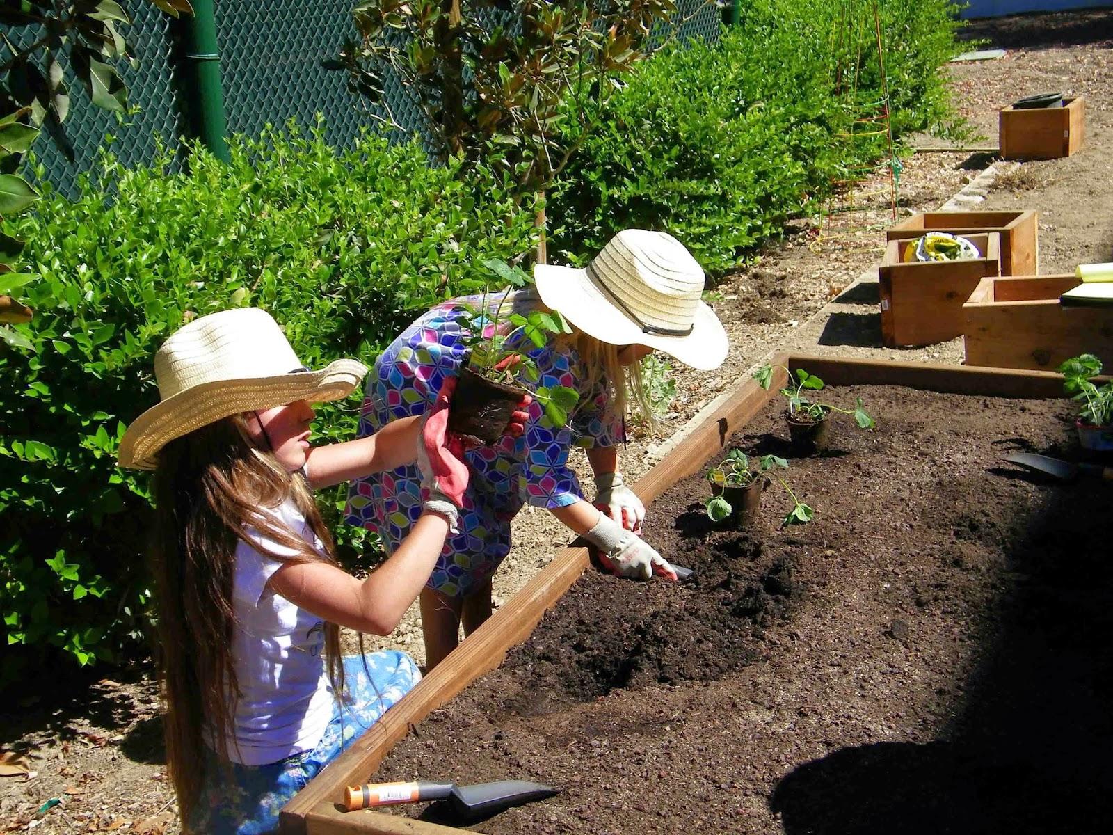 Garden Club Program Ideas Photo Album - Patiofurn Home Design Ideas