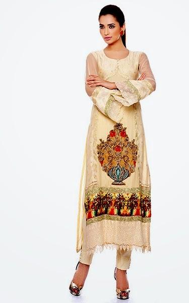 Luxurious Dresses in Pakistan