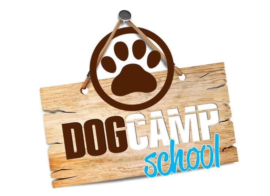 Dog Camp School