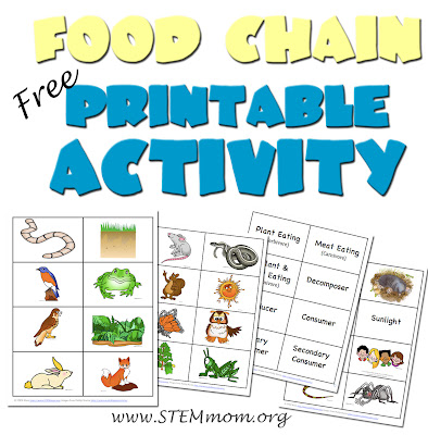 photograph regarding Food Chain Printable Activities known as Dr. STEM Mother: Foodstuff Chain Sport - Worm Product