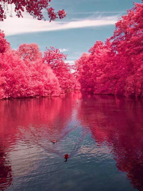 Alzheimer's Caregiver on a lake