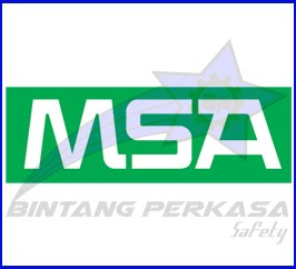 SAFETY MSA