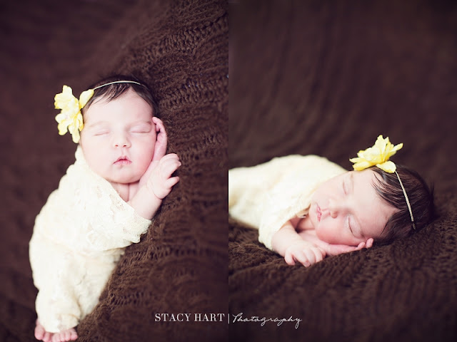 Copyright Stacy Hart Photography - Virginia Newborn Photographer