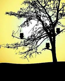 El árbol de los búhos