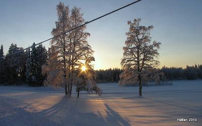 sol över åkrarna i Bjännsjö