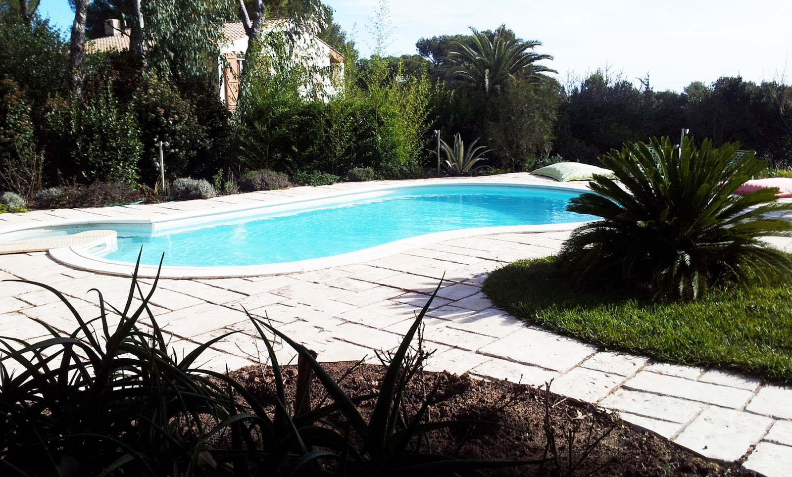 Villa boulouris jardin piscine for Piscine haricot