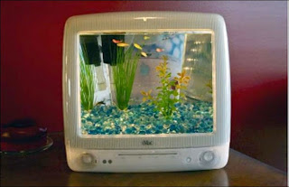 aquarium bekas monitor