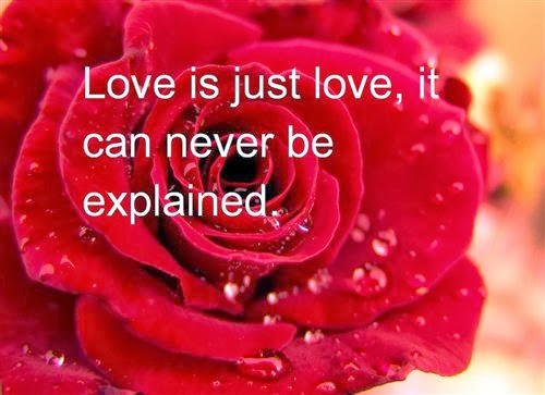 Best Valentine's Day 2014 Sayings and Quotes